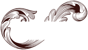 Programma Barocco Retina Logo
